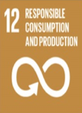 SDG 12:  Ensure Sustainable Consumption and Production Patterns