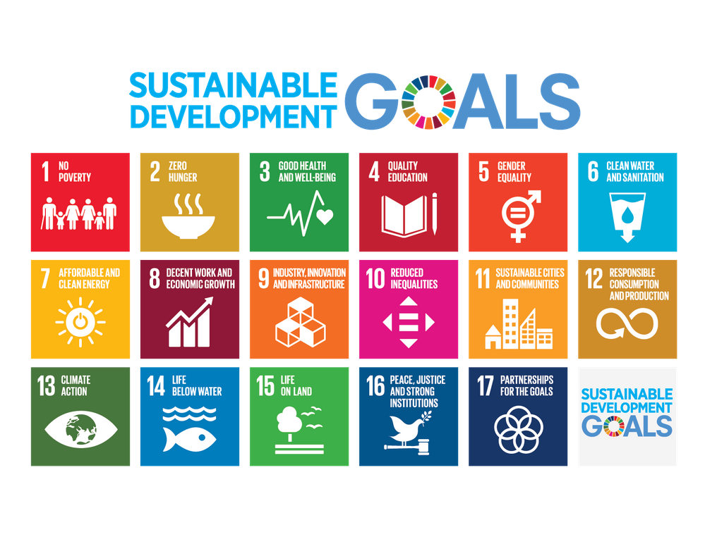 The Moonshot of our Times: Meeting the Challenge of the United Nations Sustainable Development Goals (with chemistry)