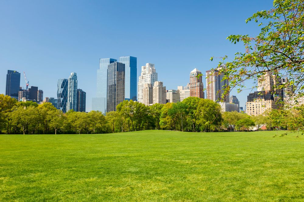 PressPac: Green space can make people happier for years
