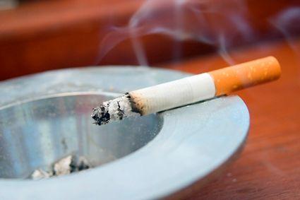 The Medical Bond: Solving the mystery of how cigarette smoking weakens bones