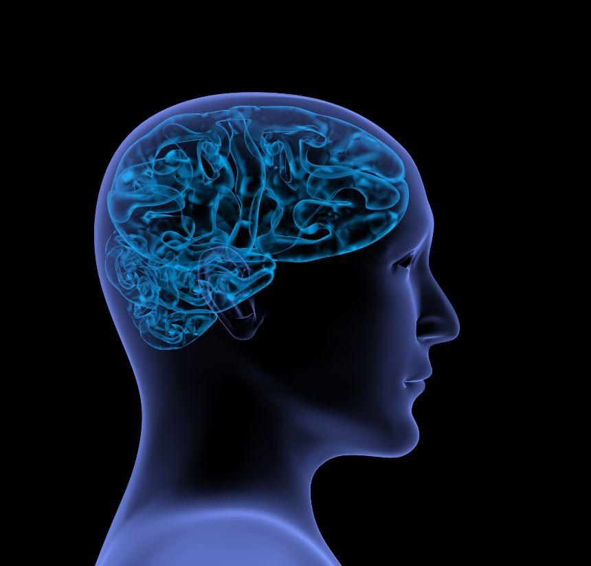 The Medical Bond: BRAIN initiative to better understand the brain
