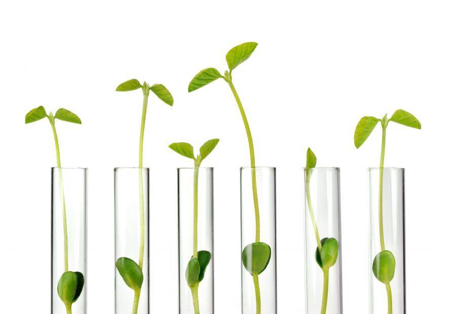 John Warner on Green Chemistry's Golden Opportunity for S&T Students