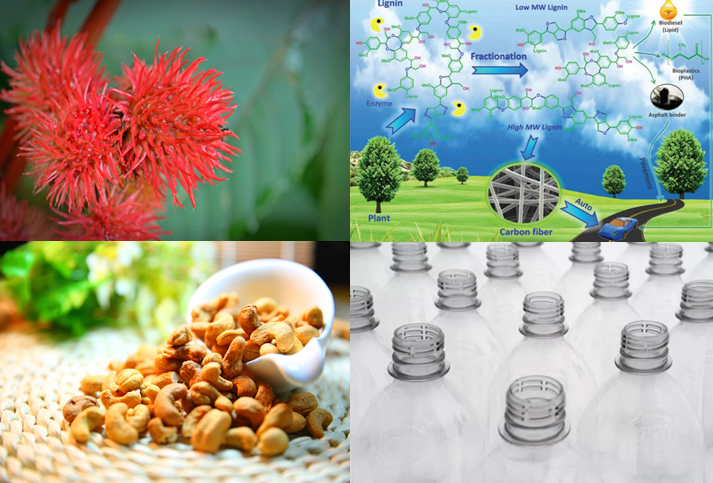 Green Chemistry News Roundup May 13 – 25, 2017