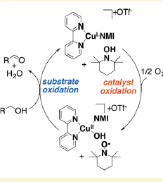 ACS Catalysis Lectureship Winner Shannon Stahl's Radical New Tools